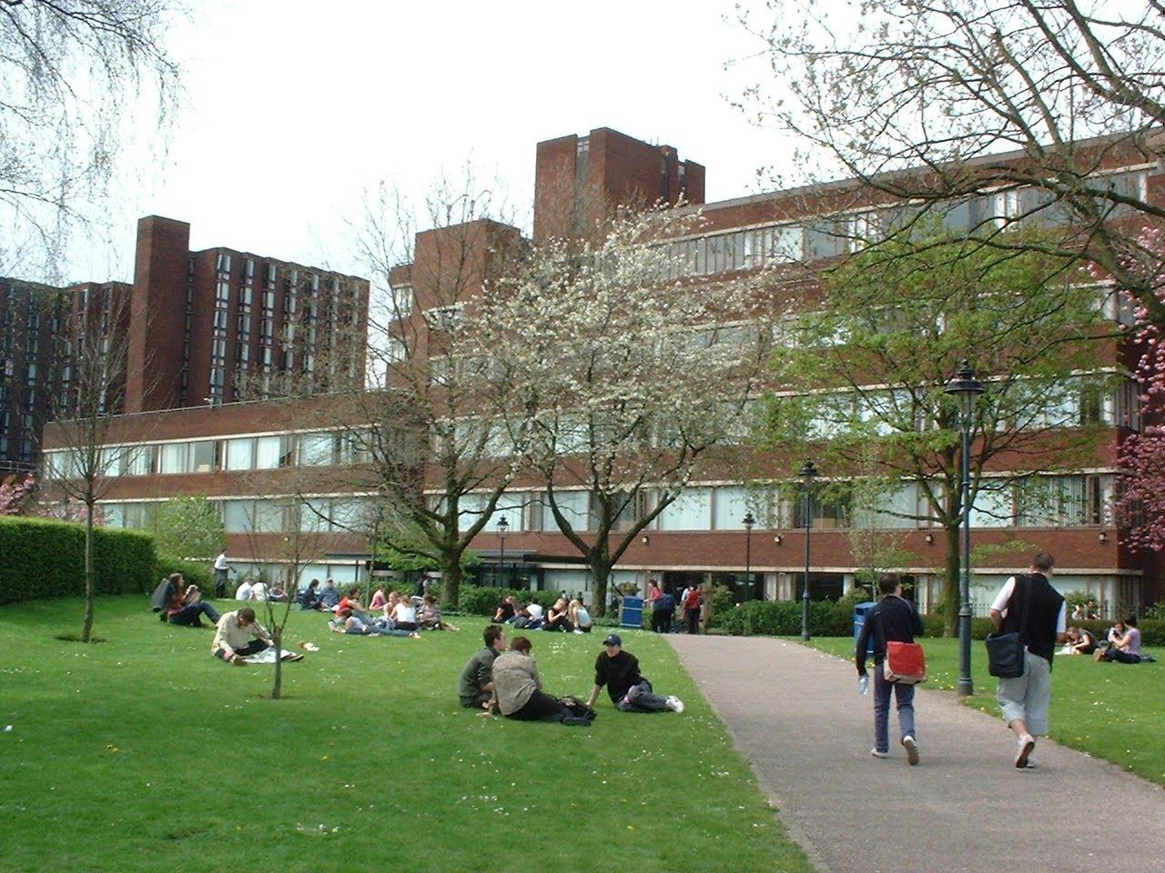 üniversite-mimarlık