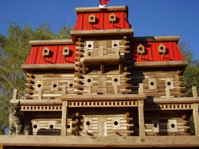 Awesome Birdhouse5