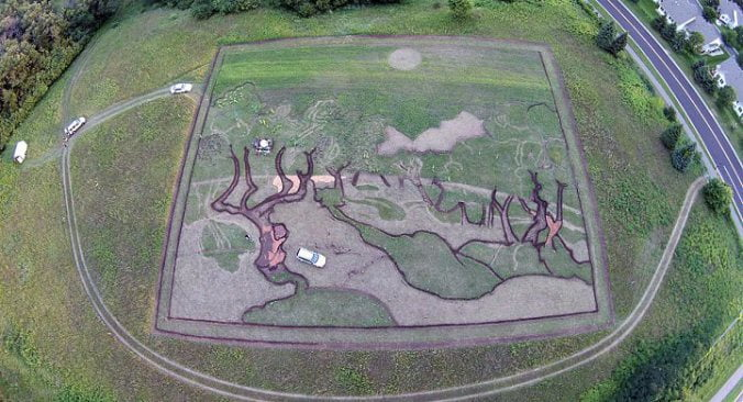 artist-cultivates-1.2-acre-field-into-crop-art-tribute-to-van-gogh-6