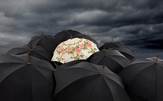 şemsiyeler ile sanat