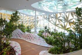 500-egzotik-kelebek-cesiti-bulunan-kelebek-evi